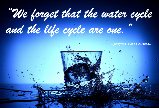 the water cycle and the life cycle are one
